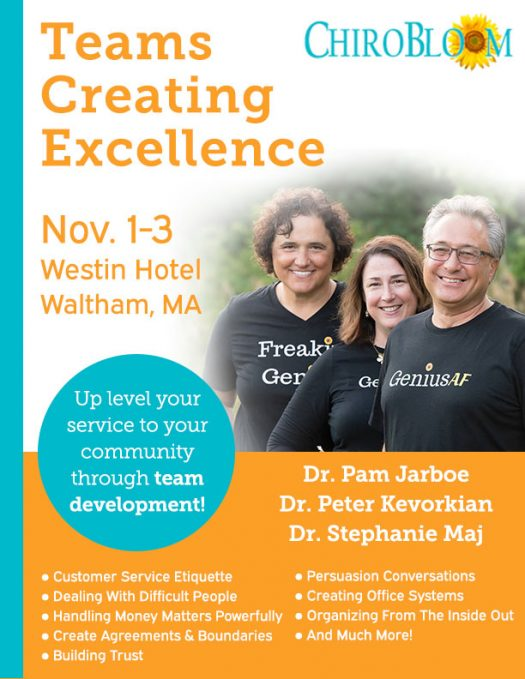 Teams Creating Excellence Event 2019