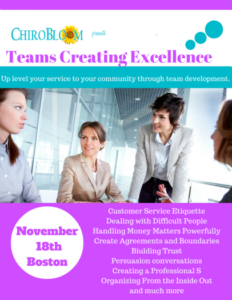 Teams Creating Excellence Seminar