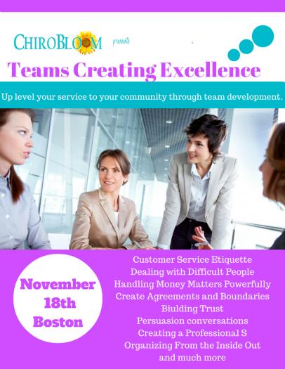 Teams Creating Excellence Seminar